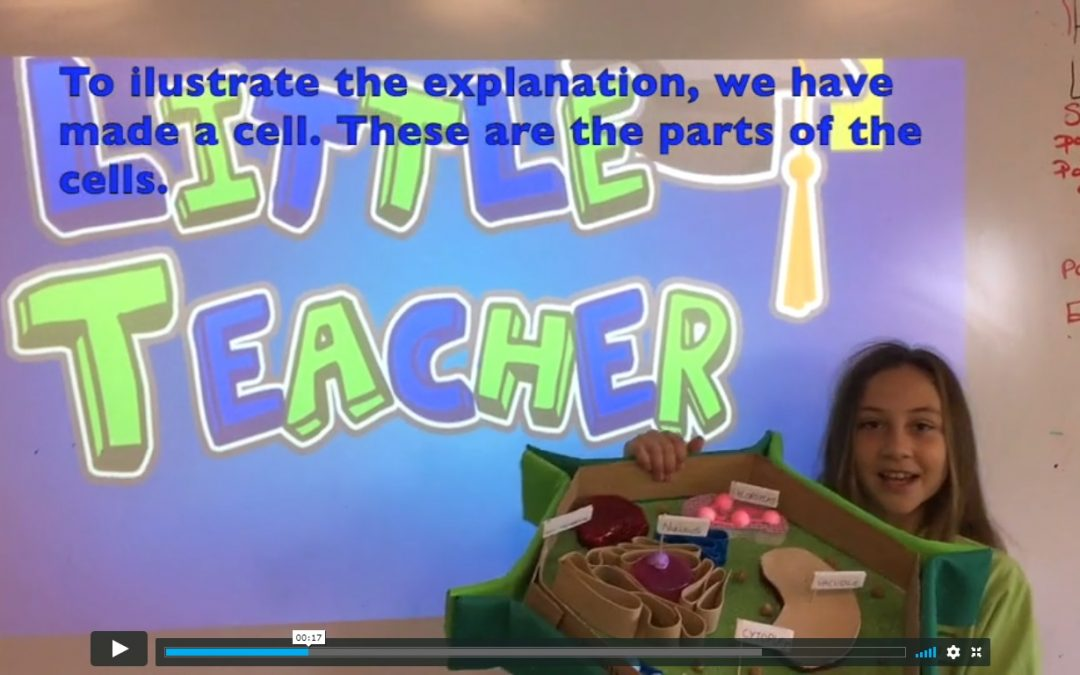 Little Teachers Project